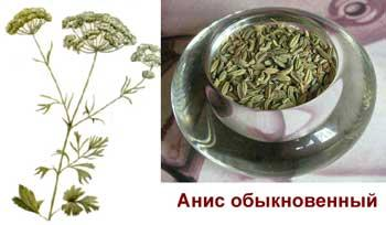 http://varimparim.ru/uploads/recept/pic24_1.jpg